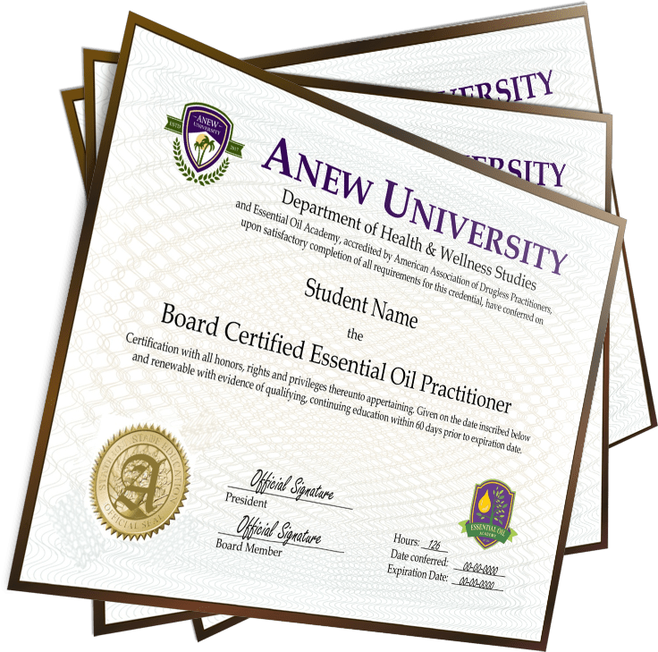 Certification by Anew University