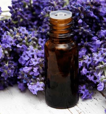lavender detox safely